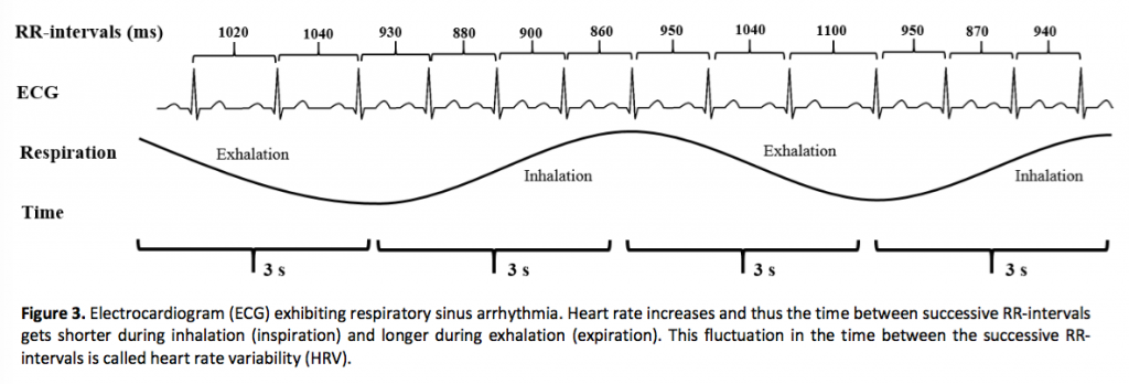 HRV from white paper